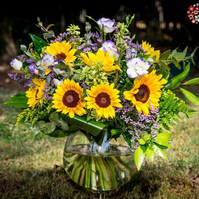 פרחים ליום יום